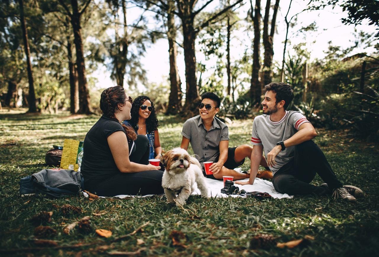 weekend destress picnic